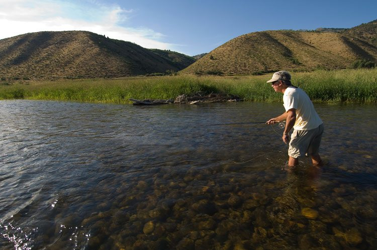 Fly Fishing the Snake River