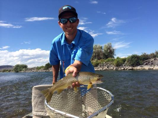 Henrys fork fishing report archives page 3 of 4 trr for Owyhee river fishing report