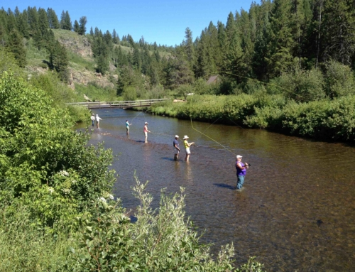 Dry dropper rigging better way to catch more fish trr for Fly fishing idaho