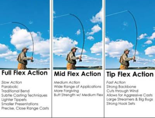 Understanding Tip-Flex, Mid-Flex and Full-Flex Action Fly Rods