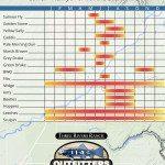 Henry's Fork Hatch Chart for the Lower Henrys Fork