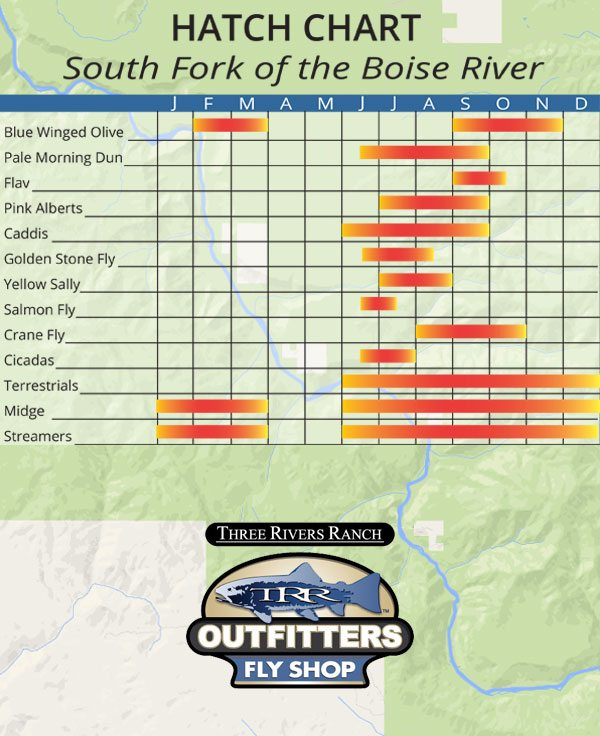 hatch chart of the South Fork of the Boise River in Idaho for Fly Fishing