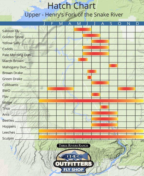 Henrys Fork Hatch Chart for The Upper River