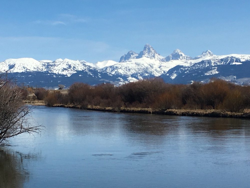 Grand Tetons and Teton River in Spring in Driggs Fly Shop