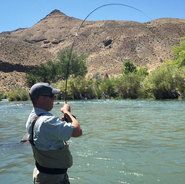 Owyhee river fishing report july 25 2015 trr outfitters for Owyhee river fly fishing