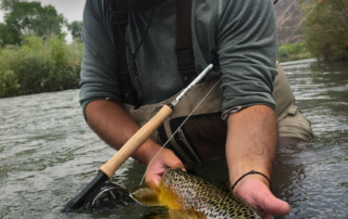 Helios 3 Fly rod review - Orvis H3 Rod Review