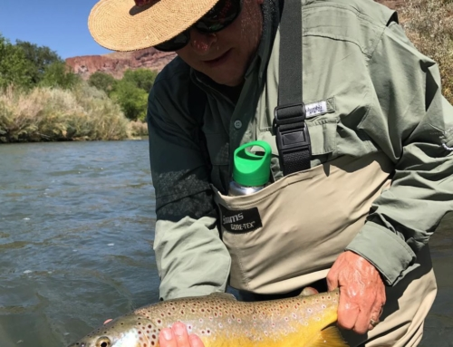 South fork of the snake river fishing report sept 4 for South fork snake river fishing report
