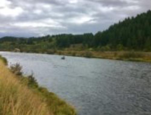 Henry's Fork Fishing Report – Sept 20