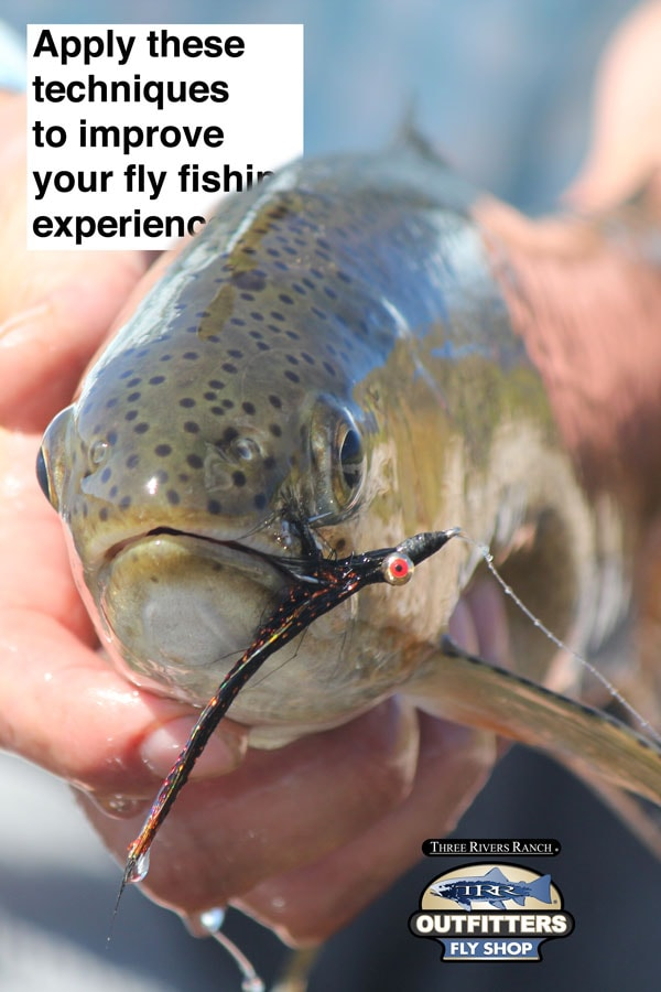 Fly Fishing Tips & tricks to make you a better fly fisherman