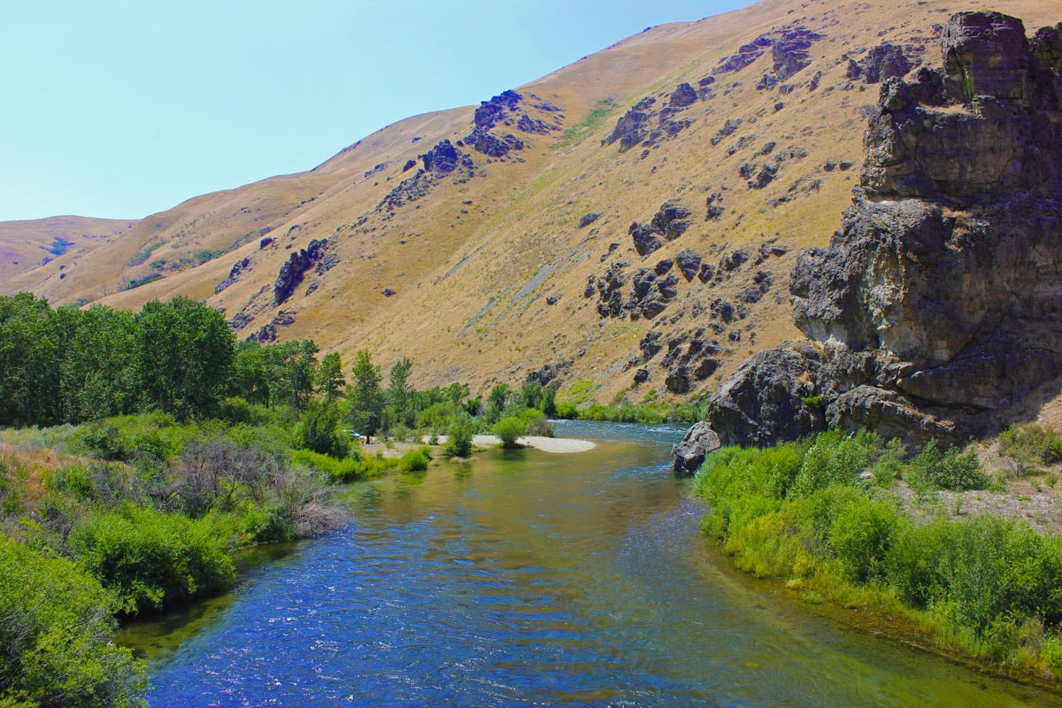 Boise River Fishing Report