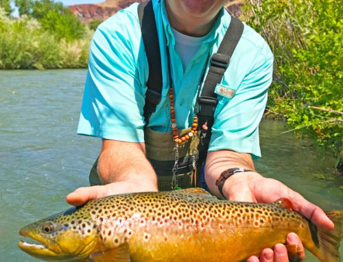 Owyhee River Fishing Report – May 4 2018