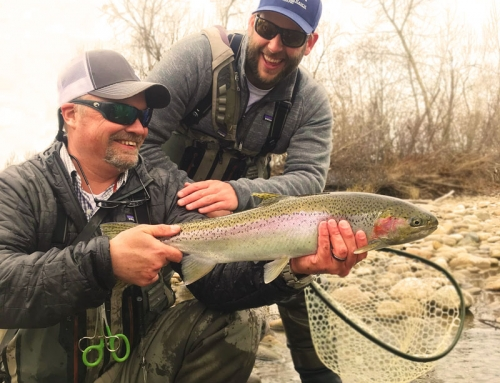 Boise River Fly Fishing Report – Feb 2019