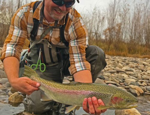 New City, New Water: an angler moves to Boise, Idaho