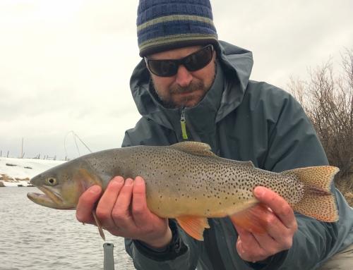 Eastern Idaho Fly Fishing Report – December 2018