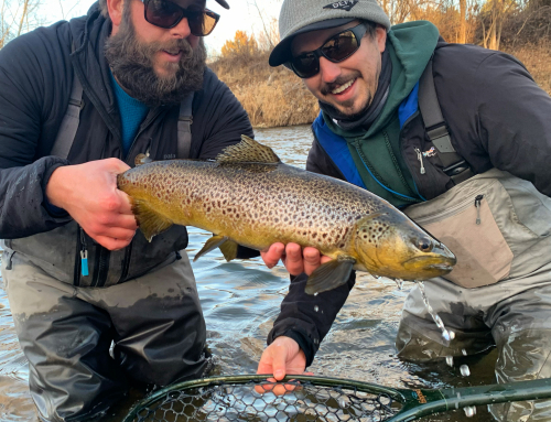 Boise Area Fishing Report for February 3rd