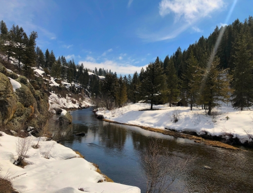 Spring Water & Runoff Report for Eastern Idaho 2020